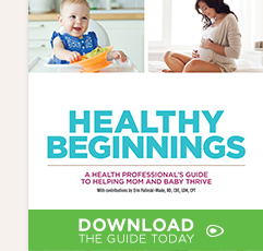 Click to download the Healthy Beginnings Guide